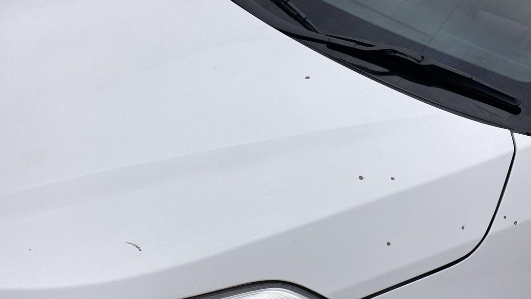HOOD DENT(S) W/ PAINT DMG (2 TO 3 INCHES)